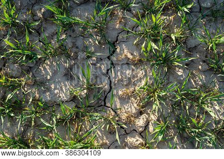 Symbol For The Climate Change And Global Warming, Dry Soil With A Crack Going Through It