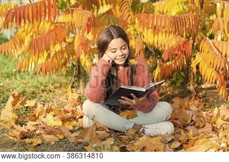 R Is For Reading. Cute Small Child Learn Reading On Sunny Autumn Day. Adorable Little Girl Reading B
