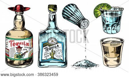 Tequila Bottles And Salt Shaker. Glass Shots With Alcoholic Drink And Lime. Engraved Hand Drawn Vint