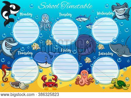School Timetable Schedule, Education Vector Template With Background Frame Of Sea Animals And Fish.