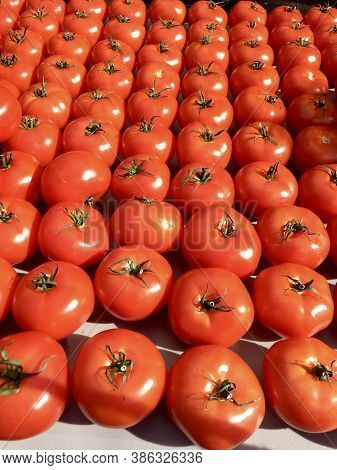 Organic Tomatoes Lined Up At A Farmers Market
