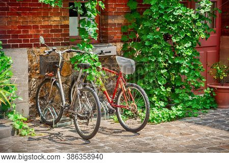 Old bicycles parked in the yard