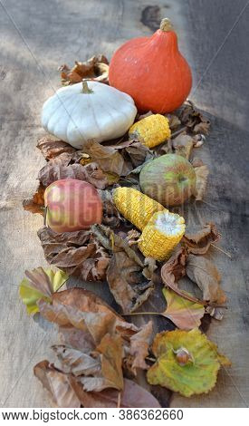Various And Colorful Autumnal Vegetables And Fruits In Leaves  On Wooden Background