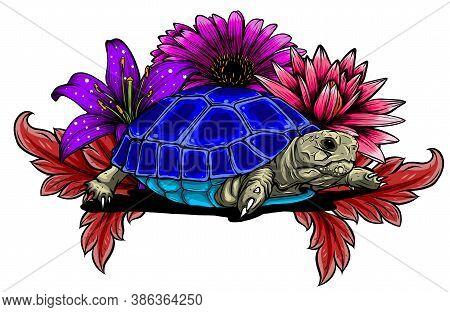 Detailed Vector Illustration Of A Generic Tortoise Land Turtle In Subtle Greens.