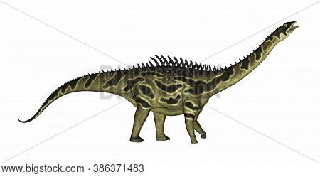 Agustinia Dinosaur Walking Isolated In White Background - 3d Render