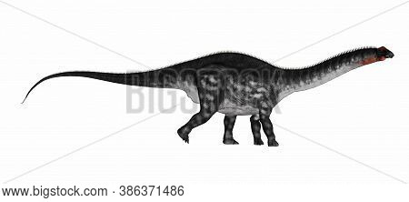 Apatosaurus Dinosaur Walking Isolated In White Background - 3d Render