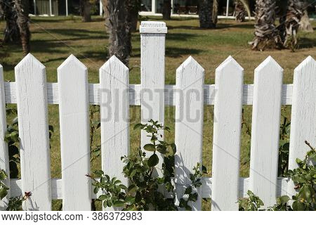 Wooden Garden Fence Painted With White Paint