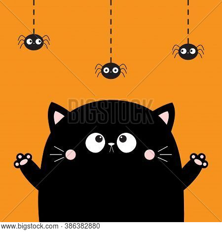 Happy Halloween. Cute Cat Face Looking At Hanging Spider. Boo. Cartoon Character. Kawaii Baby Animal