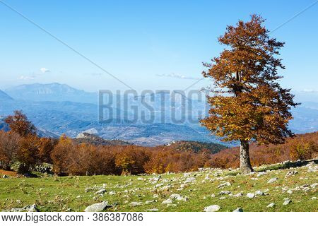 Scenic view from Serra Di Crispo in autumn, Pollino National Park, southern Apennine Mountains, southern Italy.
