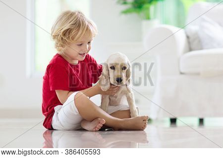 Child Playing With Baby Dog. Kids Play With Puppy. Little Boy And American Cocker Spaniel At Couch A