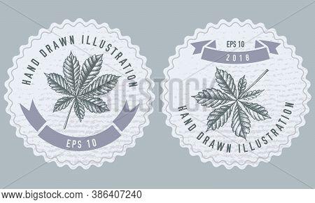 Monochrome Labels Design With Illustration Of Horse Chestnut Stock Illustration