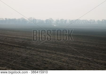 A Field With Trees Is Covered In Fog. Beautiful Sunrise In The Countryside In The Countryside. A Mys