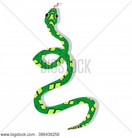Green Boa Snake Cartoon Character. Vector Illustration Isolated On White Background. Dangerous And T