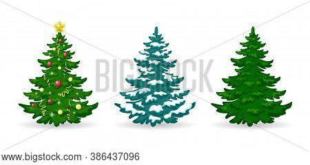 Christmas Tree. Set Of Christmas Trees With Decorations And Snow. Green Pine Or Fir With Balls, Garl