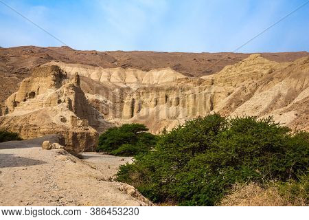 The Dead Sea. Judean desert. Ancient ruined mountains of solid limestone. Dirt road through the canyon. Green desert acacia