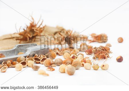 Hazelnuts With Nut Cracker On White Background. Organic Hazelnuts With Broken Hazel Shells. Healthy,