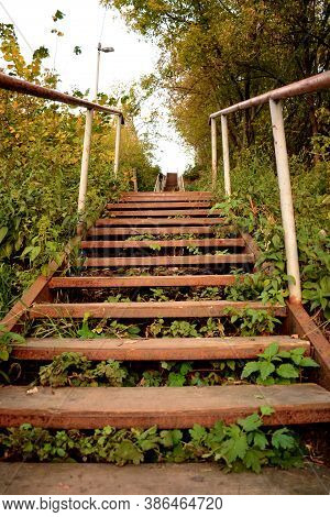 Old Wooden Staircase With Iron Railings In Thickets Of Trees And Grass.