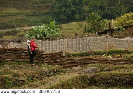 Sapa, Vietnam - November 4, 2010: A Sa Pa Native Woman, Carrying Her Child On Her Back, Hikes Throug