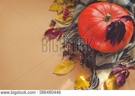 Autumn Season Flatlay. Pumpkin With Red And Yellow Leaves, Nuts And Berries On Scarf. Space