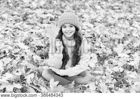 Turning Over A New Leaf. Happy Small Girl On Autumn Day. Small Kid Smile Sitting On Fall Leaves. Sma