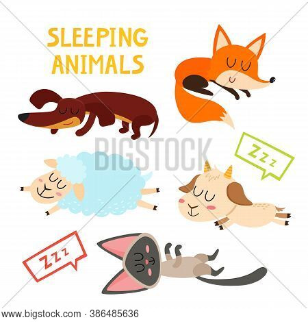 Sleeping Adorable Animals Character Isolated On White.
