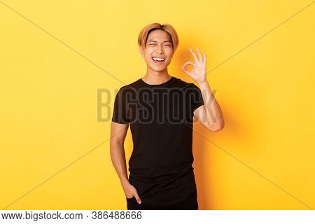 Portrait Of Satisfied And Happy Asian Smiling Guy, Showing Okay Gesture In Approval, Winking Assured