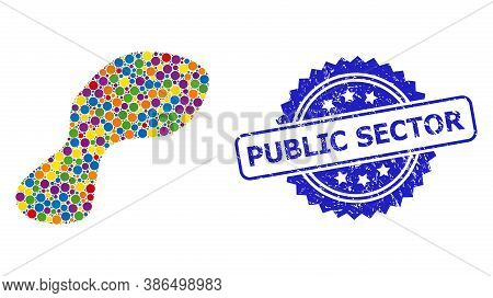Colorful Mosaic Spot, And Public Sector Unclean Rosette Seal Print. Blue Stamp Seal Includes Public