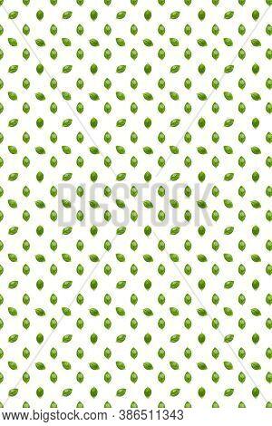 Basil. Green Leaves Of Fresh Italian Basil Background On Whte Backdrop. Basil Leaves Isolated On Whi