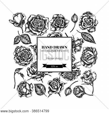 Square Floral Design With Black And White Roses Stock Illustration