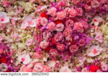 Blur Photos Of Flowers Of Various Colors For Background, Blurring A Colorful Flower Shape For The Ba