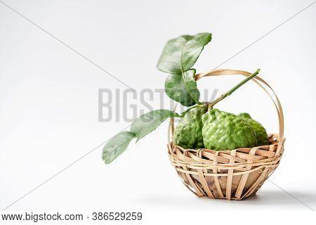 Bergamot And Tree Planting Tools, Shovels And Shoveling Fork