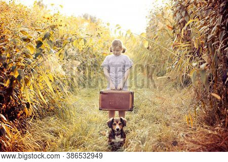 Little girl with her dog holding a suitcase in autumn field. Concept of child leaving home or lonely child.