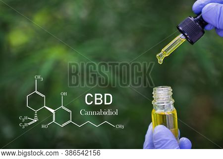 Formula Cbd Cannabidiol, Scientist Conducts Experiments By Synthesising Compounds With Using Dropper