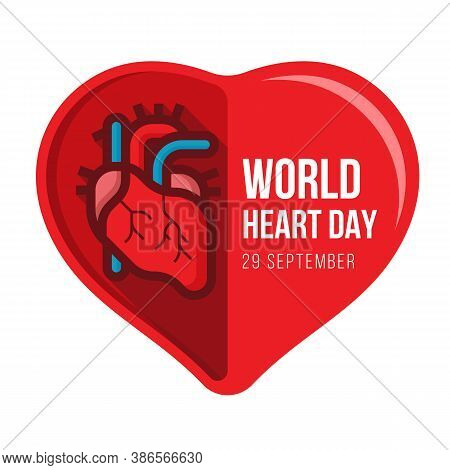 World Heart Day With Human Heart In Half Red Heart Sign Vector Design