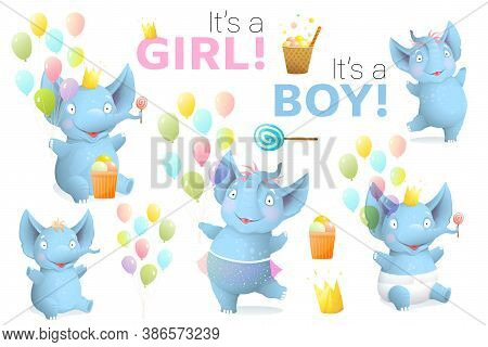 Baby Shower Infant Elephants And Birthday Objects Clipart . Newborn Elephants Its A Boy And Its A Gi