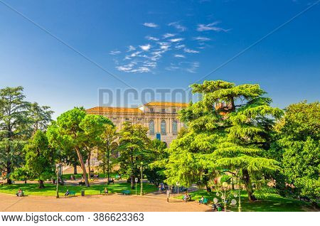Piazza Bra Square In Verona City Historical Centre With Park Garden With Green Cedar And Pine Trees,