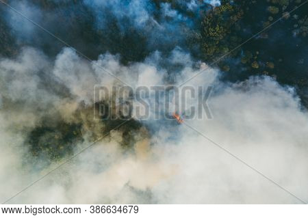 Forest Fire Or Wildfire, Aerial View. Burning Wood Land With Many Smoke.