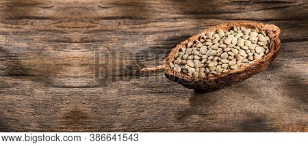 Dried Lentils In An Organic Bowl - Lens Culinaris
