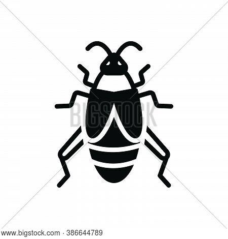 Black Solid Icon For Cricket Bug Creepy Disease Croton-bug Dirty Grasshopper Critter Prejudicial Ins
