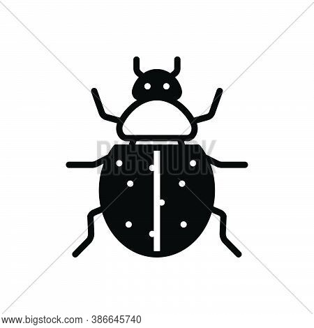 Black Solid Icon For Ladybug Bettle Herbivore Insecticide Ladybird Dor Bug Bedbug Chinch Dirty Critt