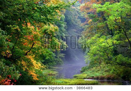 Beautiful Autumn Morning