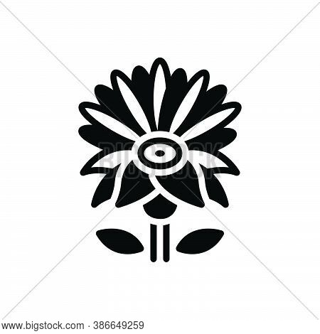 Black Solid Icon For Blue-water-lily Lily Lilium Martagon Water Meditation Aquatic Lotus Natural Flo