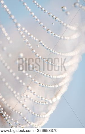 Close Up Of Round Drops Of Dew On A Cobweb, Blue Abstract Background. Macro Photo Of Dew Drops With