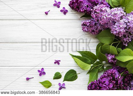 Lilac In Flat Style On White Wooden Background. Beautiful Spring. Overhead View. Flat Lay, Top. Summ