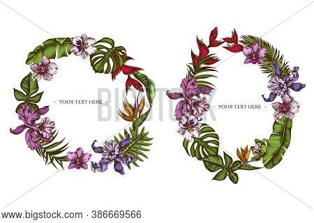 Floral Wreath Of Colored Monstera, Banana Palm Leaves, Strelitzia, Heliconia, Tropical Palm Leaves,