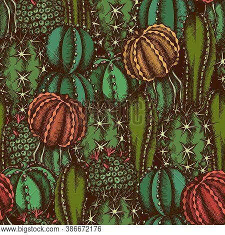 Seamless Pattern With Hand Drawn Colored Cactus Stock Illustration