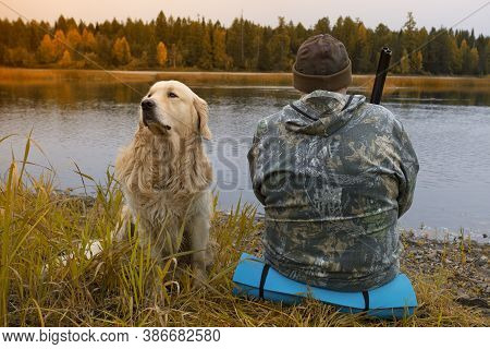A Hunter With A Gun And A Dog. Autumn Duck Hunting. Golden Retriever.