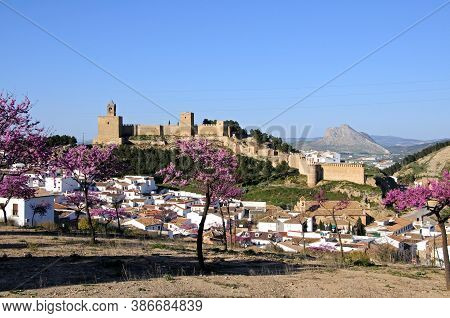 Elevated View Of The Town With The Castle And Lovers Mountain To The Rear And Pink Blossom Trees In