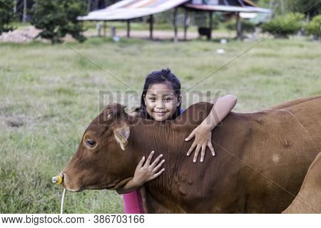 An Asian Girl Lovingly Hugs Her Cow In A Ranch. The Concept Of Animal Love.