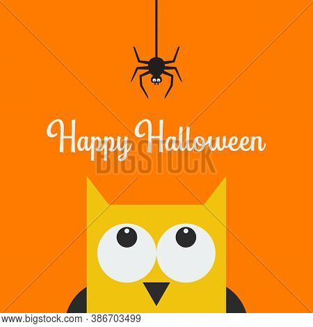 Owl Face Head Looking Up To Hanging On Dash Line Web Spider. Vector Illustration